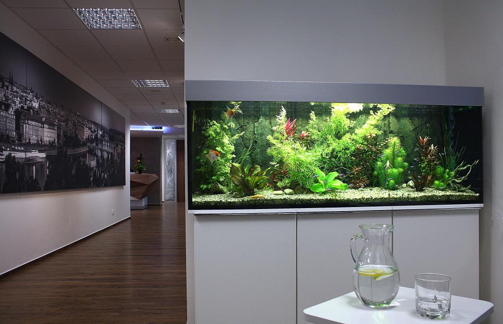 Akvárium na míru 300 litrů