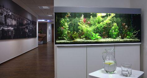 NATLAND Group akvárium 300 litrů