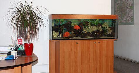 Akvárium pana Špačka