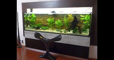 Předělávka akvária o objemu 800 litrů