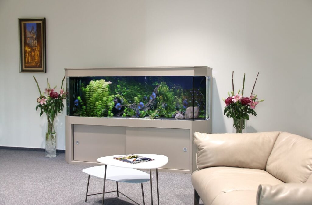 Akvárium na míru 600 litrů – terčovci
