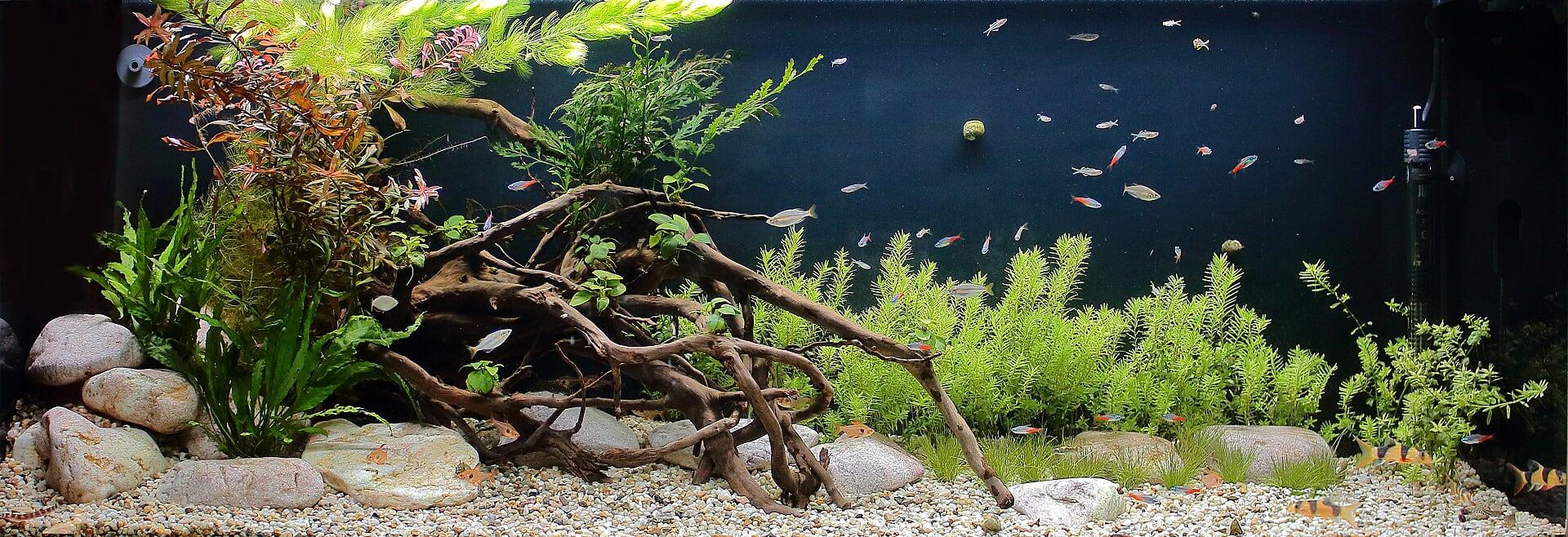 Akvárium na míru 200 litrů