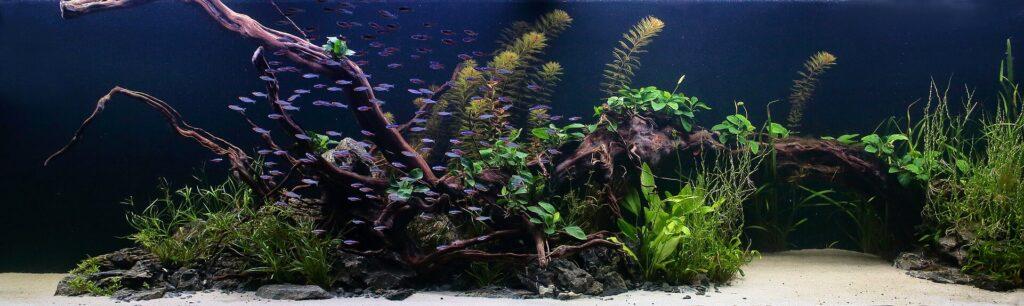 Akvárium na míru 1000 litrů
